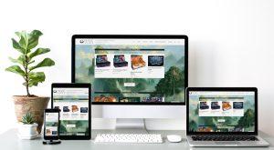 Webseitenpräsentation Hive Games